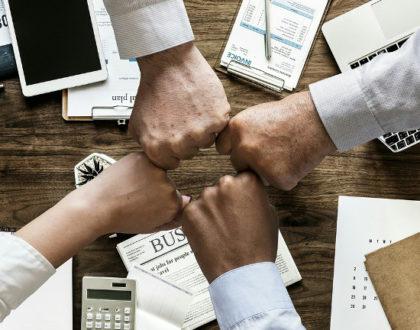 Conseils SEO pour les décideurs